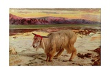 The Scapegoat, 1854 Lámina giclée por William Holman Hunt