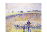 Shepherd with Sheep, 1888 Reproduction procédé giclée par Camille Pissarro