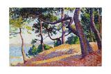 Landscape in Saint-Tropez, 1892 Giclee Print by Maximilien Luce