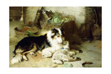 Motherless-The Shepherd's Pet, 1897 Giclee Print by Walter Hunt