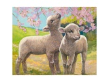 Two Lambs Eating Blossom Giclee Print by Van Der Syde