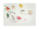 Flower Study Giclee Print by Odilon Redon