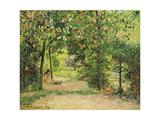 The Garden at Eragny in Spring, 1894 Reproduction procédé giclée par Camille Pissarro