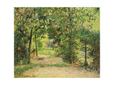 The Garden at Eragny in Spring, 1894 Stampa giclée di Camille Pissarro