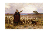 Shepherdess with Her Flock, 1907 Giclee Print by Theophile Louis Deyrolle