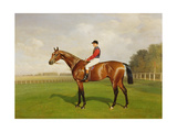 Diamond Jubilee', Winner of the 1900 Derby, 1900 Giclee Print by Emil Adam