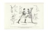 The Pugilistic Kangaroo Giclee Print by Phil May