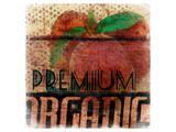Premium Organic Prints by Irena Orlov