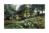 A Wooded River Landscape with Deer Beyond, 1904 Giclee Print by Peder Monsted