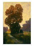 Summertime II Prints by Graham Reynolds