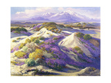 Verbena Clad Dunes Giclee Print by Fred Grayson Sayre