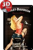 Harley-Davidson Biker Babe Plaque en métal