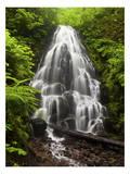 Fairy Falls Oregon Prints by Michael Polk