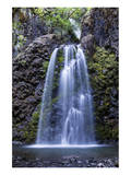 Fall Creek Falls Oregon Posters by Michael Polk