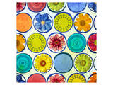 Circle Pattern with Flowers II Posters by Irena Orlov