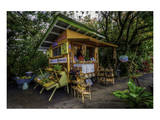 Maui Huelo Fruit Stand Prints by Michael Polk