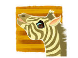 Zebra portrait Art by Penny Keenan