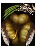 Squash Beans Corn indian Garden Prints