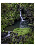 Hanawi Falls Hana Highway Prints by Michael Polk