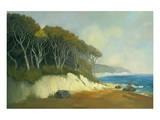 Northern Shore II Print by Graham Reynolds