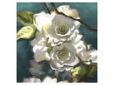 Roses 07 Poster by Kurt Novak
