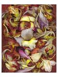 Marbled Paper Gladiolas Poster