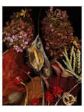Dried Leaves hydrangea Posters
