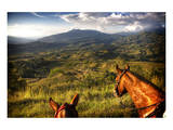 Horses with Mountain View Print by Nish Nalbandian