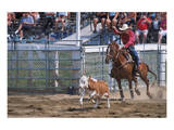 Rodeo in Valleyfield, Quebec, Canada Prints