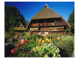 Black Forest Museum Germany Print