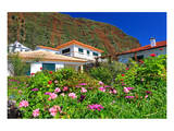 Garden and Holiday Homes in Jardim do Mar, Madeira Island, Portugal Posters