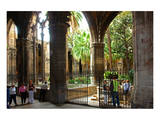Cloister of Catedral La Seu in the Barri Gotic, Barcelona, Catalonia, Spain Print