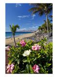 Beach Playa Blanca, Puerto del Carmen, Lanzarote, Canary Islands, Spain Prints