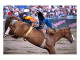 Rodeo in Valleyfield, Quebec, Canada Posters
