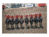 Royal Canadian Mounted Police at Calgary Stampede, Calgary, Alberta, Canada Prints