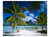Beach on Bora Bora, Island of Tahiti, French Polynesia, The South Seas Posters