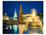 Christmas tree at Trafalgar Square, London, South England, Great Britain Print