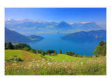 View of Lake Lucerne near Vitznau, Canton of Lucerne, Switzerland Plakater