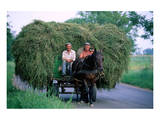 Hay transport, Great Hungarian Plain, Hungary Prints