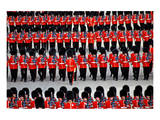 The Queen's Annual Birthday Parade Trooping the Colour, Horse Guards Parade at Whitehall, London Posters