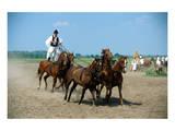 Horse show in Bugac, Bacs-Kiskun, Hungary Art