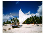 Sailing boat Jangada at Combuco Beach near Fortaleza, Ceara, Brazil Prints