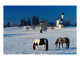 St. Marinus church at the foot of the Irschenberg, Upper Bavaria, Bavaria, Germany hph15 Posters