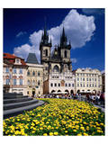 The Stone Bell House and Church of our Lady at Tyn, Old Town Square, Prague, Czech Republic Prints