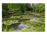 Claude Monet's Water Garden in Giverny, Department of Eure, Upper Normandy, France Art