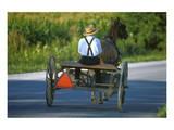 Amish driving a horse-drawn cart, Pennsylvania, USA Plakater