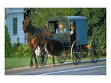 Amish in a carriage, Pennsylvania, USA Prints