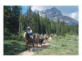 Horseback riding tour in Banff National Park, Alberta, Canada Posters