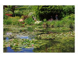 Claude Monet's Water Garden in Giverny, Department of Eure, Upper Normandy, France Poster