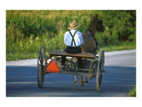 Amish driving a horse-drawn cart, Pennsylvania, USA Prints